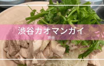 日本 東京 渋谷 タイ料理 カオマンガイ
